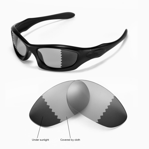 1222932806 Walleva Transition Photochromic Polarized Replacement Lenses for ...